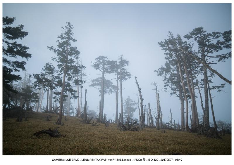 関西の星景スポット大台ケ原で星の風景撮影で天の川35.jpg