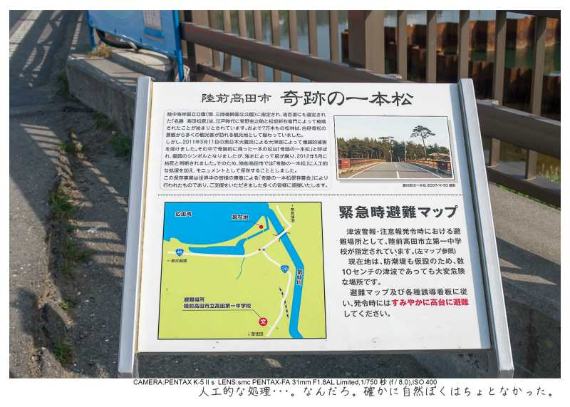 陸前高田奇跡の一本松10.jpg