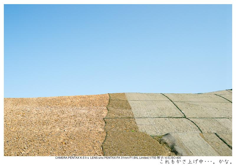 陸前高田奇跡の一本松7.jpg