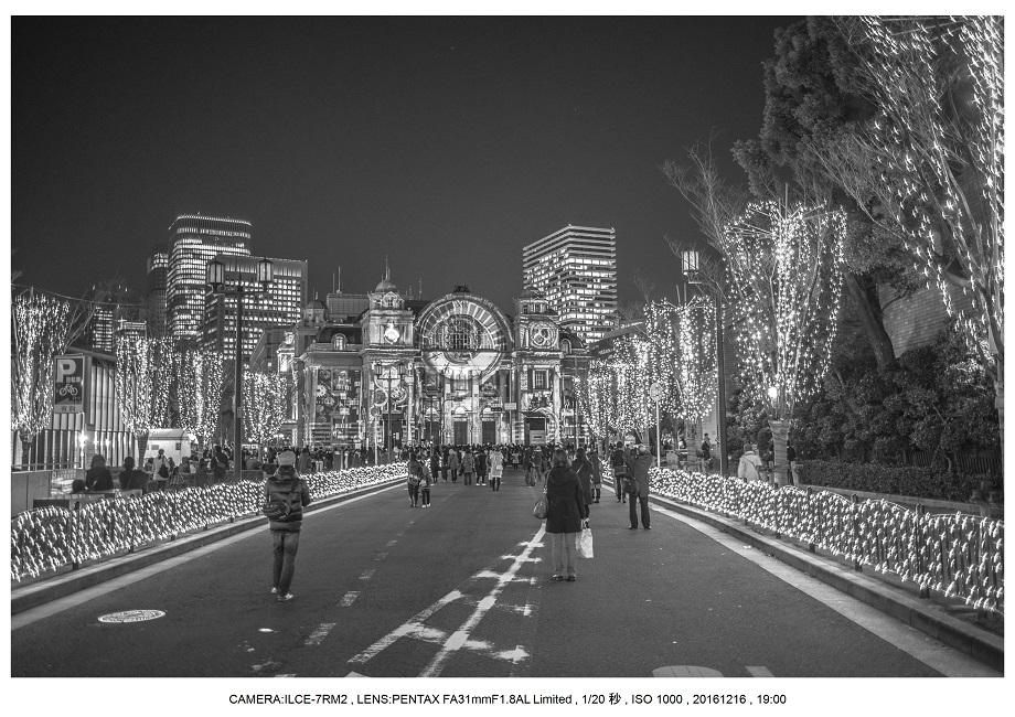 OSAKA光のルネサンス2016_1.jpg