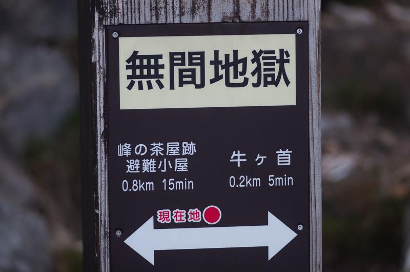 IMGP0238-1.jpg