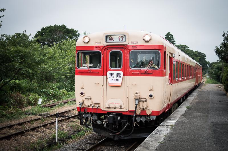 IMGP3548-1.jpg