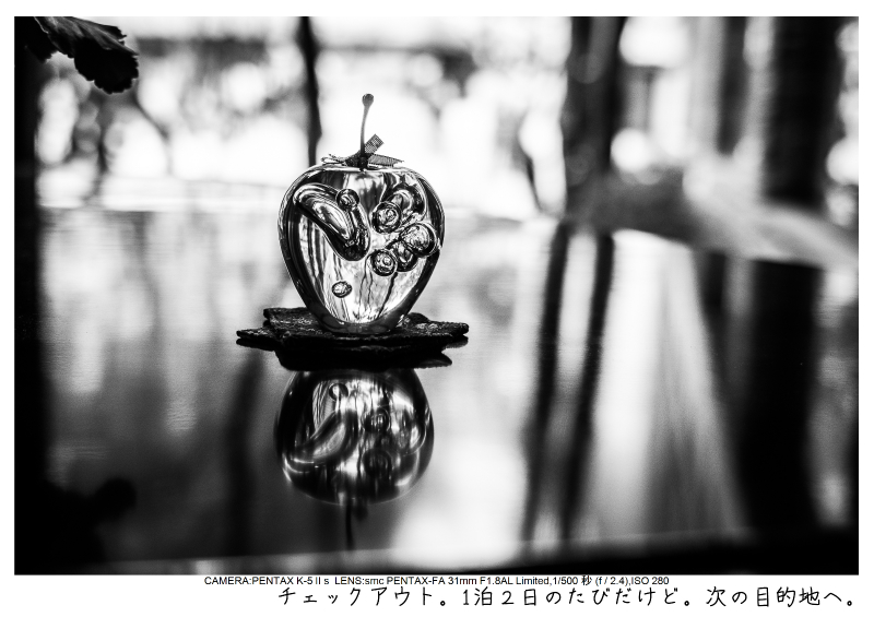 snowmonkey jigokudani127.jpg