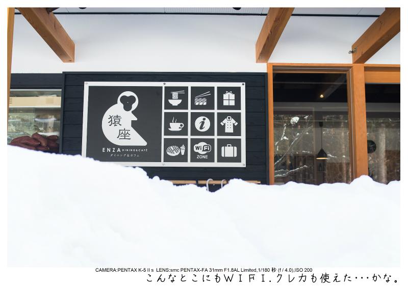 snowmonkey jigokudani14.jpg