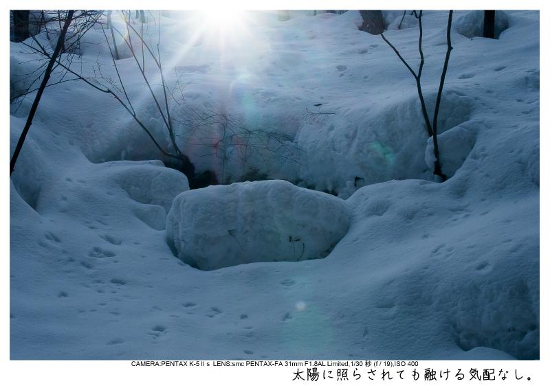 snowmonkey jigokudani21.jpg