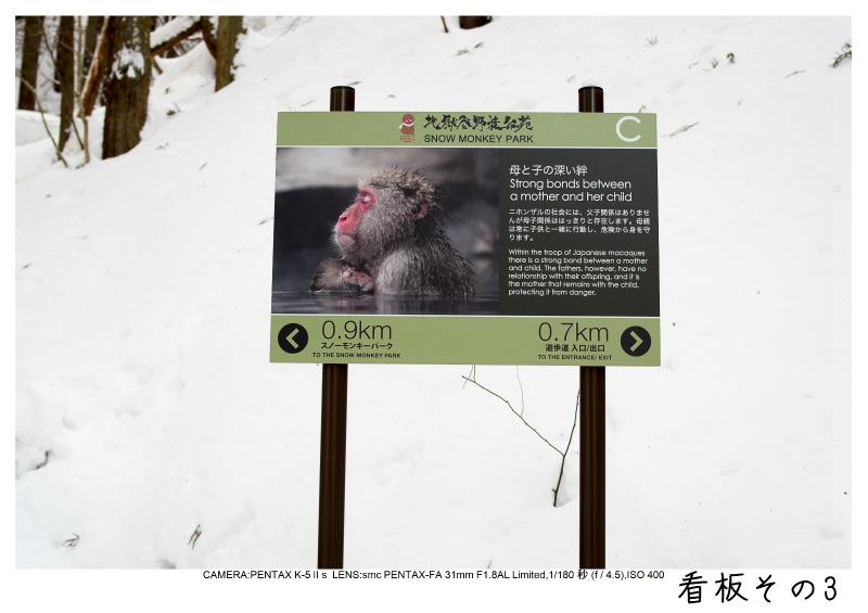 snowmonkey jigokudani25.jpg